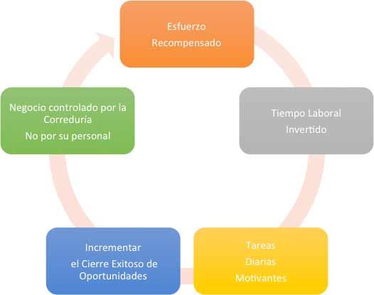 web_imagen4