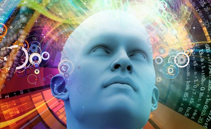 IBSEN: el simulador del comportamiento humano… también en el sector de seguros