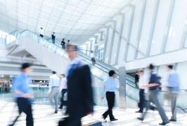 ¿Cómo se calcula el valor de la vida en el seguro de responsabilidad civil?